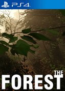Cover zu The Forest - PlayStation 4