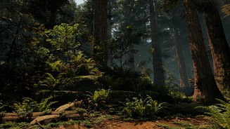 Unreal Engine 4 - Screenshots aus der Wald-Demo